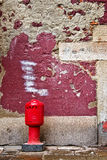 Fire hydrant in front of a red old wall, Venice Stock Image