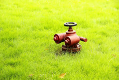 Fire hydrant with grassplot Stock Images