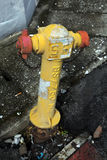 Fire hydrant in Malaysia Stock Photography