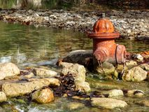 Fire hydrant in the middle of creek Stock Image