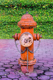 Fire hydrant. Stock Photography