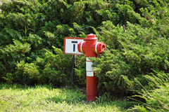 Fire hydrant in the park Stock Photo