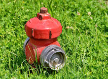 Fire hydrant. Red fire plug in green grass Stock Photos