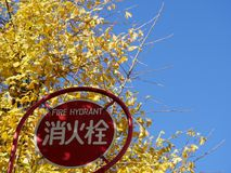 Fire hydrant sign with gingko leaves background in Tokyo. Tokyo, Japan-December 13, 2017: Fire hydrant sign with gingko leaves background located under Tokyo Royalty Free Stock Photo