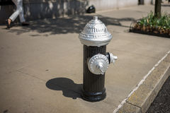 Fire Hydrant Silver Royalty Free Stock Photos