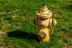 Fire hydrant in Toronto Royalty Free Stock Photo
