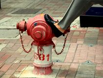 Fire Hydrant Urban Scene. Resting against a fire hydrant while waiting on a sidewalk in the city stock photography