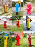 Fire Hydrants collage montage collection Stock Images