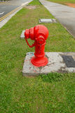 Fire hydrants outside building on public road, Outdoor. Stock Photo