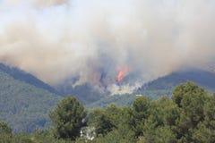 Fire on Ibiza Stock Photos