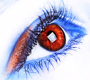 Fire and ice. Image of a human eye in blue and red Stock Photos