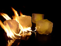Fire & Ice. Burning Icecubes on black surface royalty free stock images