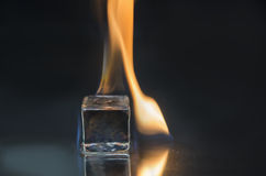 Fire and ice. Burning ice cube on a shiny surface Royalty Free Stock Photos