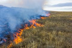 Free Fire In The Steppe. Burning Dry Grass, Emergency. Stock Photo - 121953560