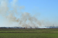 Fire on irrigation canals Stock Photography