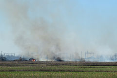 Fire on irrigation canals Royalty Free Stock Photo