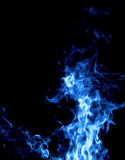 Fire isolated Stock Images