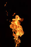 Fire isolated on black background. With gas Stock Images