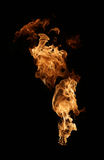 Fire isolated on black. Fire and flames isolated on black Stock Photography