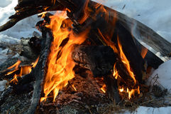 A fire kindled on the snow. A fire kindled on the snow on a cold day stock photos