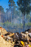 The fire from the landfill has spread to the forest. The wind spread the fire into the woods with a fire at the solid waste landfill Royalty Free Stock Photography