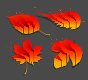 Fire leaf. Global warming illustration Stock Photo