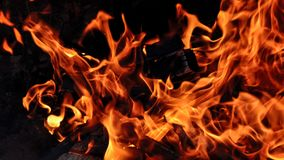 Fire with logs. Fire flames with logs and dark background stock photo