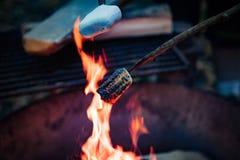 Fire Marshmellow Stock Image