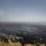 Fire at Masai mara Kenya Stock Image