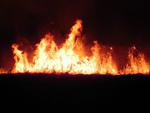 Fire in the meadow at night Royalty Free Stock Photography