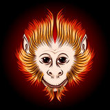 Fire Monkey Face. Cute Fire monkey face. Eastern Symbol of next year Stock Image