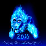 Fire Monkey. Head of fire Monkey in blue color. New Years Banner design on black Stock Image
