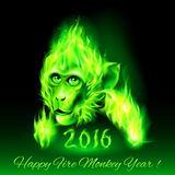 Fire Monkey. Head of fire Monkey in green color. New Years Banner design on black Royalty Free Stock Image