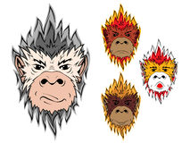 Fire monkey 2016. Fire monkey. The head of a monkey painted of flames, symbol of new year 2016 on the Chinese calendar Vector Illustration