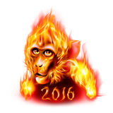 Fire Monkey. Head Of The Red Fire Monkey. New Years Banner design on white Royalty Free Stock Photography