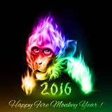 Fire Monkey. Head of fire Monkey in spectrum colors. New Years Banner design on black Stock Image