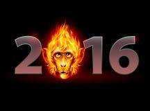 Fire Monkey Stock Photography