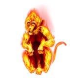 Fire Monkey Stock Image