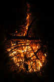 Fire in nature. Royalty Free Stock Image
