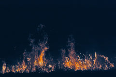 Fire in the nature Royalty Free Stock Photos