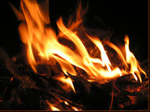 Fire in the night. Preparing barbeque Royalty Free Stock Images