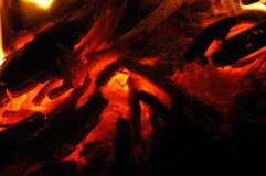 The fire in the night. Stock Photo