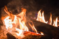 Fire at night. A burning campfire. Flame Stock Photos