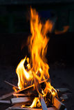 Fire in the night Stock Photography