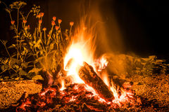 Fire at night. Night fire, under the open sky Stock Photo
