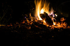 Fire at night. Night fire under the open sky Royalty Free Stock Image