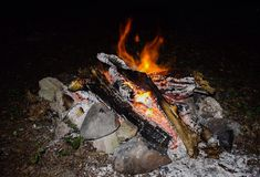 Fire in night. Warm Stock Photography