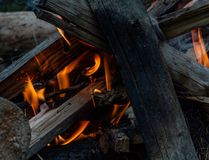 The fire of a fire in the open air royalty free stock images