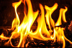 Fire. Open fire burning in oven Royalty Free Stock Image