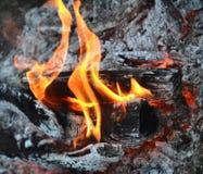 Fire. Orange fire burning on wood Stock Image